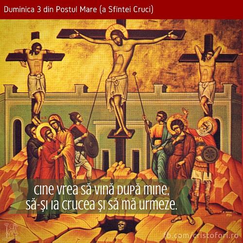 Cine vrea să vină după Mine, să își ia crucea