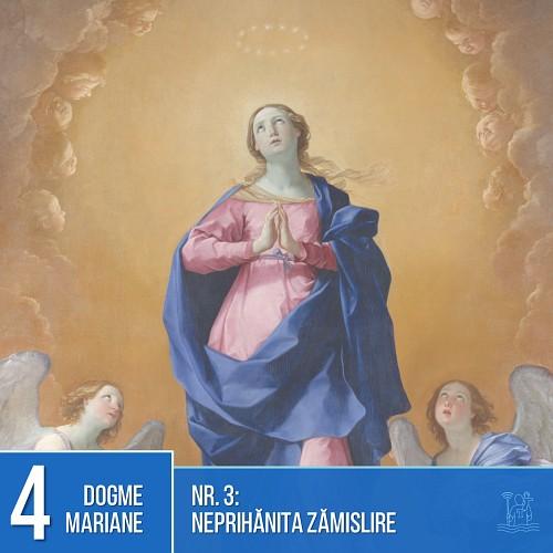 Dogme mariane: Neprihănita Zămislire
