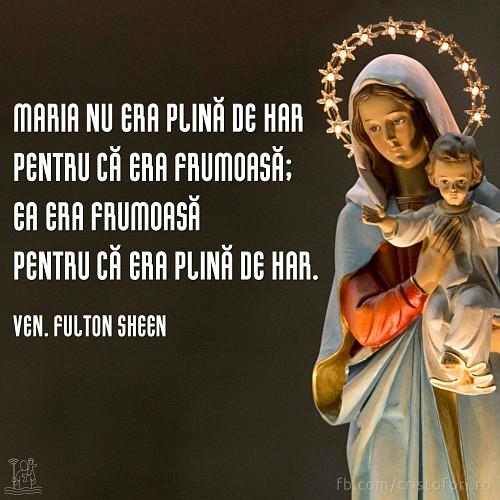 Maria, cea plină de har