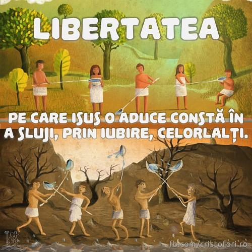 Libertatea înseamnă slujire